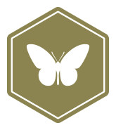 Bee1-icon-community