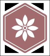 Bee1-icon-wellness