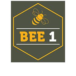 Site-logo-v2